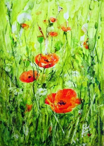 BarbaraStevens_Poppies