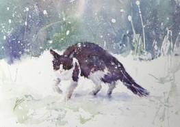 BarbaraStevens_SnowCat