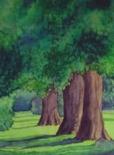 BarbaraStevens_SummerTrees
