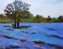 BevLourenco_LavenderField