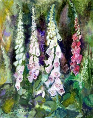 MarionEastwood_Foxgloves