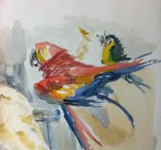 PeterChristie_Birds