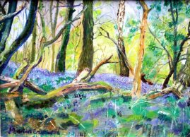 MarionEastwood_Bluebells