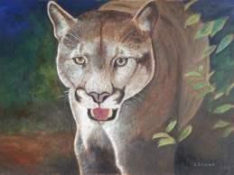 ColinGarrod_Cougar