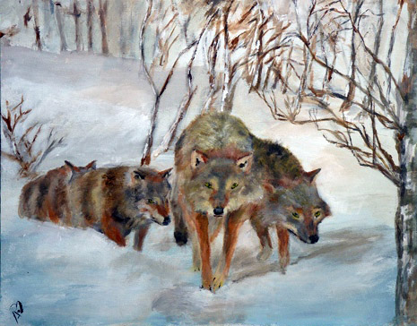 RichardSeymour_WolfPack