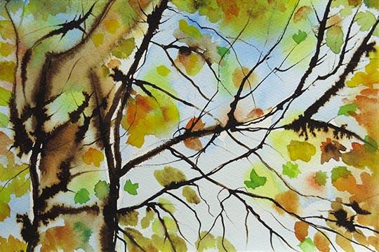 LouiseSchenck_AutumnLeaves