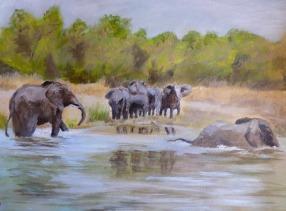 RichardSeymour_ElephantsInAndByTheNile
