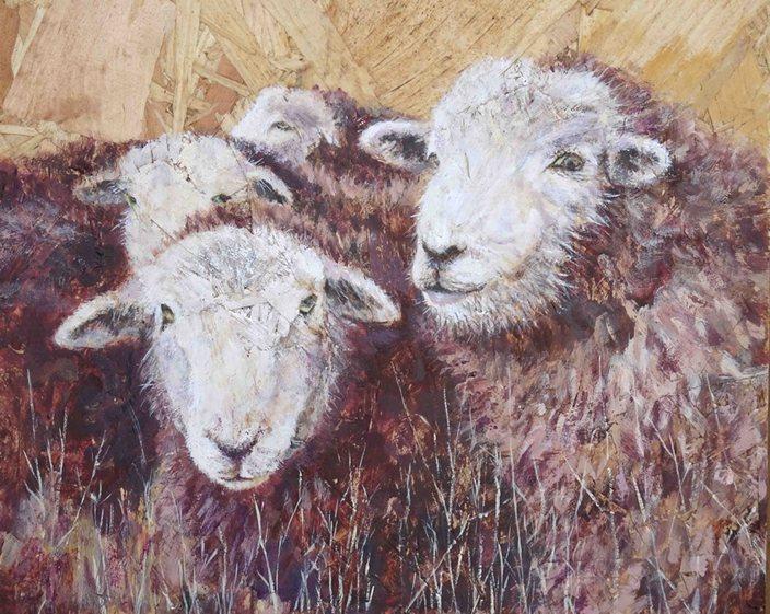 Challenge_Sheep's eyes